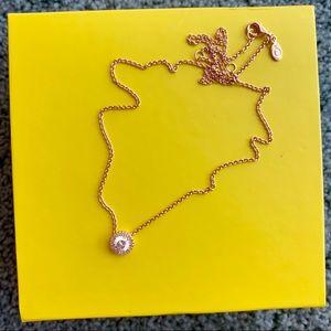 Pandora Rose necklace
